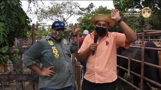 Control sanitario para el ganado en Tonosí