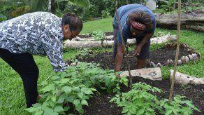 Islas del Pacífico tratan de evitar escasez de alimentos
