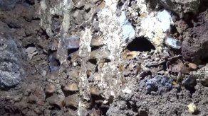 Descubren 119 cráneos de sacrificios aztecas en México
