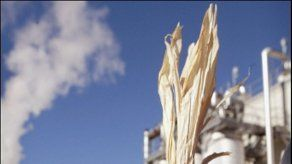 Destacan impacto positivo de etanol brasileño en ambiente