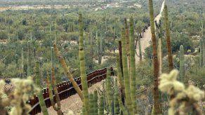 Ambientalistas buscan parar construcción de muro en Arizona