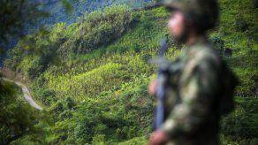 Colombia tramita identificación a exguerrilleros de FARC para reintegración