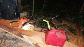Sanción de mil balboas a dos personas por tala ilegal en Parque Nacional Soberanía