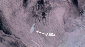 Iceberg amenaza flora y fauna de isla en Antártida