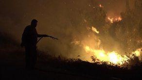 El incendio en la isla griega de Eubea provoca una catástrofe ecológica