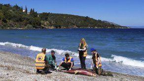 Aumenta cantidad de delfines muertos en el mar Egeo