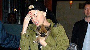 Miley Cyrus renuncia a su nuevo cachorro