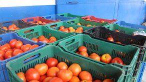 Retienen 70 cajas de tomates sin documentación en Chiriquí