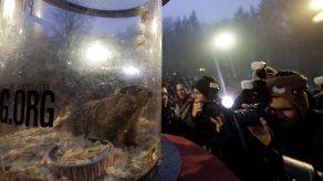 Marmota de Pennsylvania pronostica 6 semanas más de frío