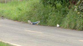 Encuentran cadáver en Villa de las Acacias