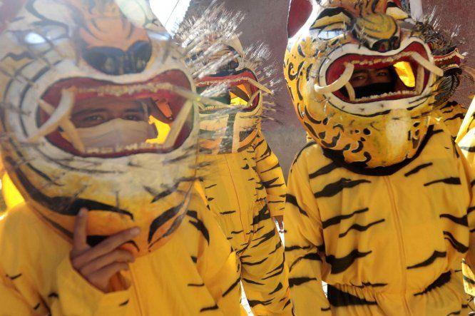 Desfile Tigrada anual de México