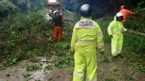 Mal tiempo sobre Panamá provoca inundaciones y caída de árboles