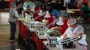 Jornada de esterilización de perros y gatos este domingo en el Casco Viejo
