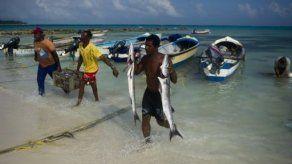 Genética e investigación empujan exportación de marisco colombiano