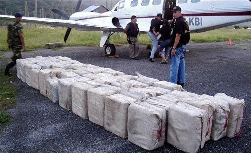 Policía destruye cultivo de coca y laboratorio en Quito