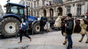Un menú escolar sin carne crea polémica en Francia