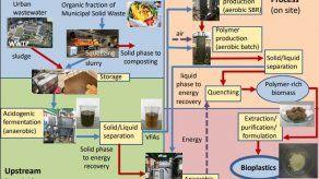 Elaboran bioplásticos a partir de residuos orgánicos urbanos