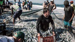 La crisis climática se mitigaría si se frena la sobrepesca