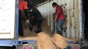 Más de 400 productores han vendido sus cosechas a través del IMA