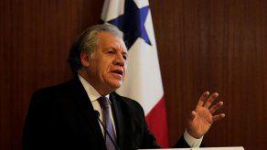 Almagro dice que el mayor problema para la democracia son los burros que gobiernan