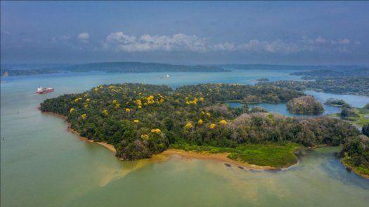 El Canal de Panamá indicó que también ha tomado medidas en búsqueda de maximizar su eficiencia operativa y ambiental, implementando acciones de conservación del agua y optimizando el tránsito.