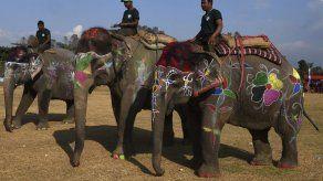 Festival de belleza de elefantes en Nepal