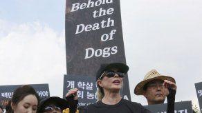 Kim Basinger protesta por consumo de carne de perro en Surcorea