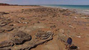 Halladas 21 tipos de huellas de dinosaurio en el Jurassic Park australiano