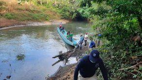 Ministerio Público investiga tala de más de 180 kilómetros en bosques de Darién