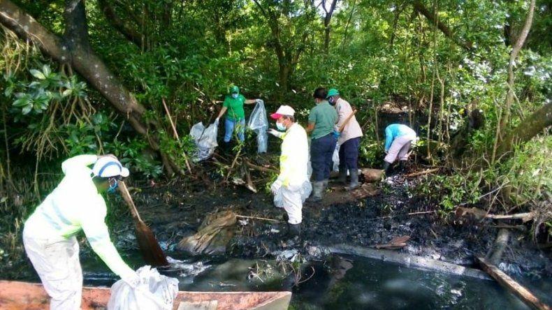 MiAmbiente: Creación de fiscalía superior fortalece persecución de delitos ambientales