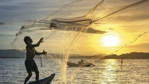 ARAP desmiente que se haya aprobado Decreto que regule los trasmallos y la pesca de tiburones