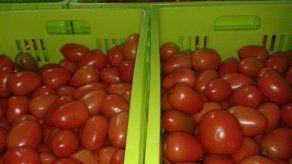 Autorizan importación de un contingente de pasta o pulpa de tomate para evitar desabastecimiento