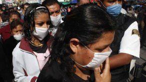 Las muertes por gripe A ascienden a 133 en el sur de Brasil