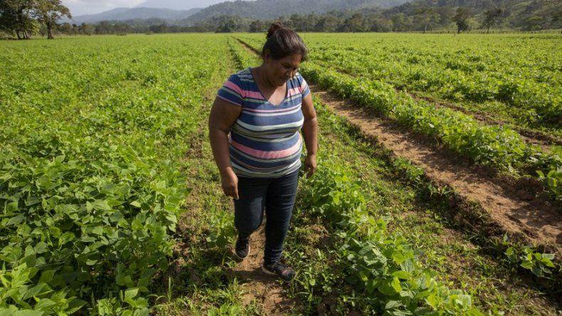 La nueva vida de refugiados nicaragüenses en Costa Rica