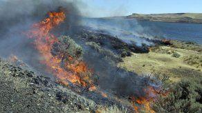 EEUU lanza plan para prevenir incendios forestales en oeste