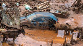 Arsénico y plomo en gran río de Brasil devastado por deslave