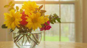 Tips de oro para que las flores duren mucho más tiempo