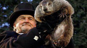 Marmota pronostica 6 semanas más de tiempo invernal en EEUU