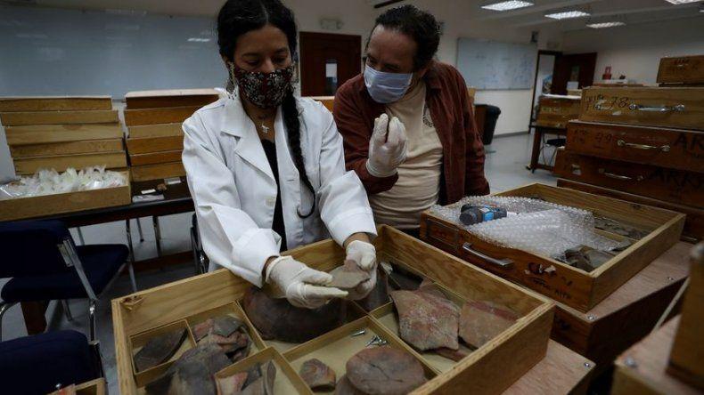 Miles de piezas arqueológicas de una cultura de 5.000 años retornan a Ecuador