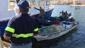 ARAP implementa mecanismos de protección a mamíferos marinos para seguir exportando