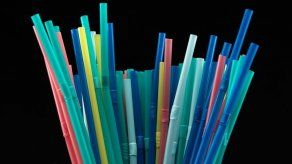 Presidente Cortizo veta parcialmente proyecto que regula la reducción de plásticos de un solo uso