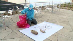 Hallan cientos de partes de animales que eran usadas para brujería en Colombia