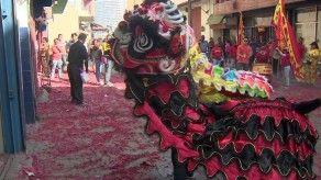 Sociedad China de Panamá celebra el año del Cerdo de Tierra