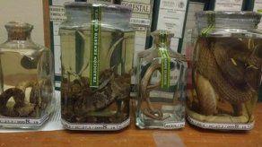 México incauta botellas de mezcal con víboras en su interior