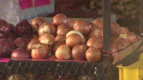Detectan cebollas vencidas y con etiquetado irregular en Merca Panamá