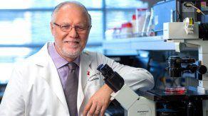 Un gen podría ayudar a crear un marcapasos natural