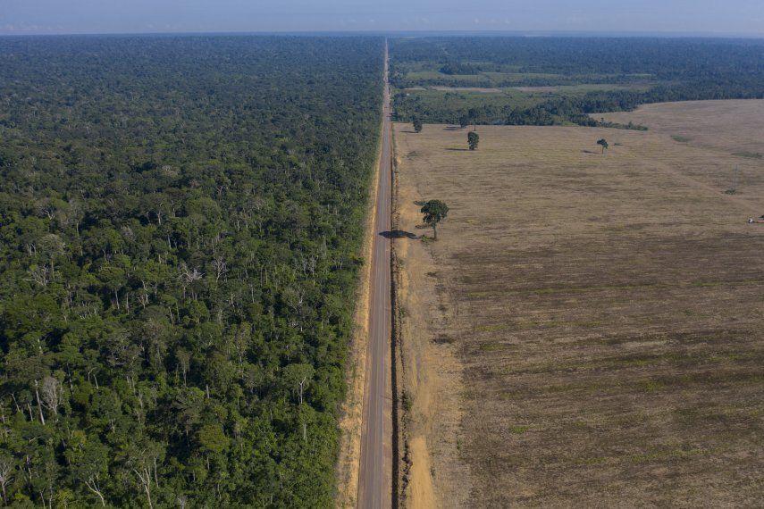 Las escasas precipitaciones de noviembre a abril en Brasil complican el panorama de la destrucción en ciertas partes de la Amazonia donde se talan y queman árboles para despejar tierras de pastoreo.