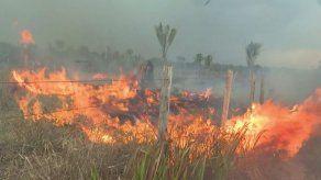 Brasil rechaza ayuda del G7 para combatir incendios amazónicos