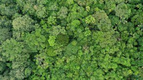 Expedición busca con alta tecnología avión desaparecido en Costa Rica en 1965