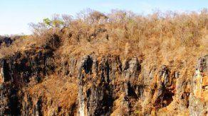 Científicos elaboran base de datos de bosque seco de Latinoamérica y Caribe
